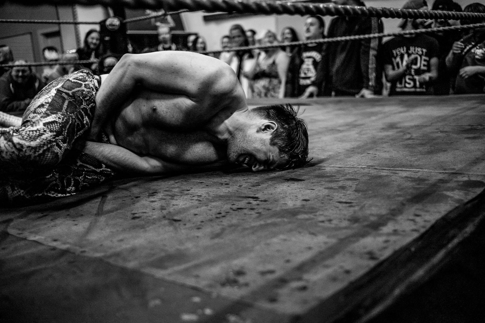 wXw Academy Wrestling