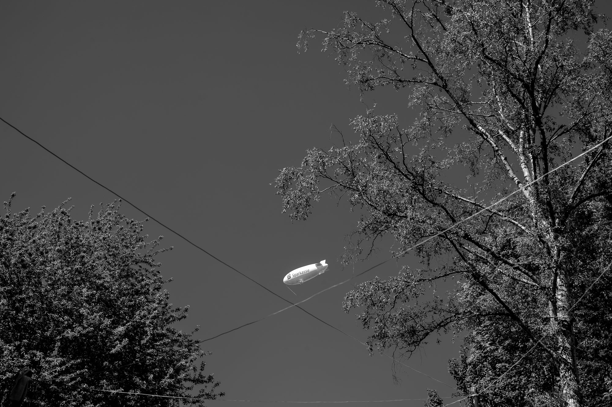 Zeppelin in the sky, framed by trees, clothes lines criss-cossing below it